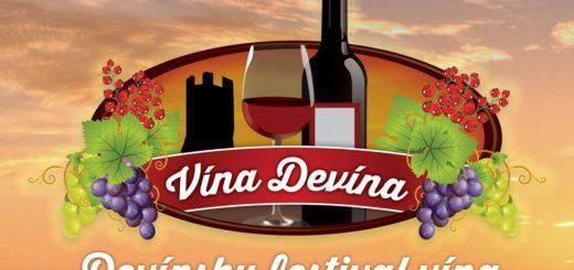 devinsky festival vina